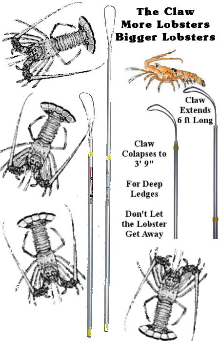 Extendable Lobster TICKLE STICK catch snare The Claw